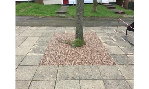 Resin Bound Gravel around a tree
